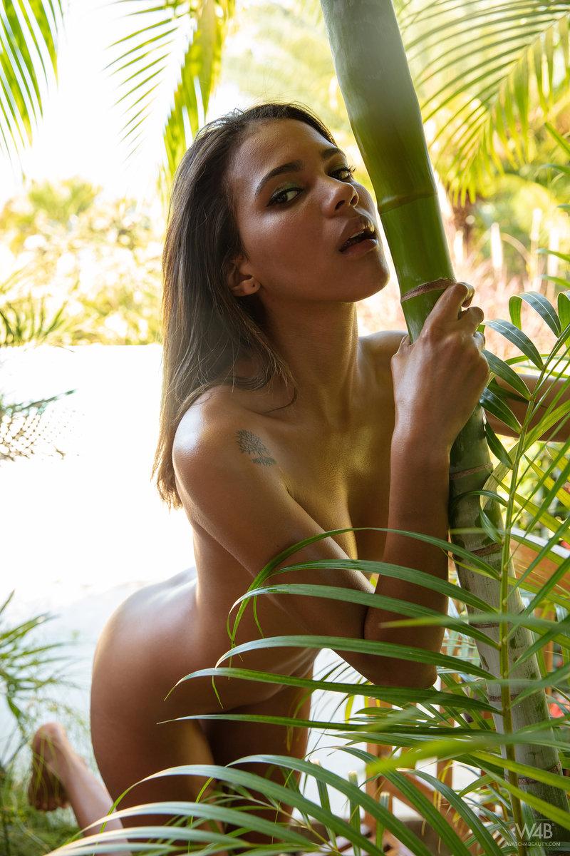 Abril - Jungle Girl